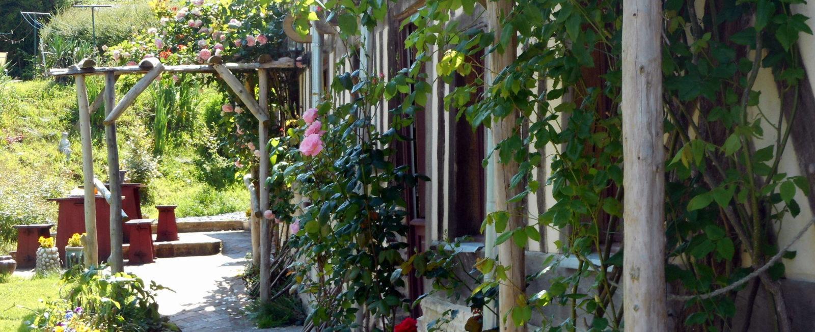 Fleurs manoir de Pontfol