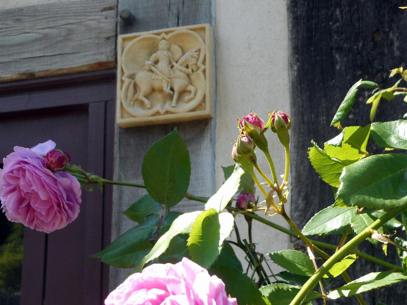 Roses manoir de Pontfol